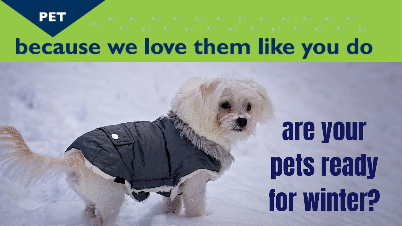 ARE YOUR PETS READY FOR WINTER?