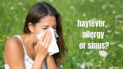 Allergies Hayfever or Sinus